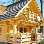 Gate Lodge 296 Sq. Ft. Log Tiny Home