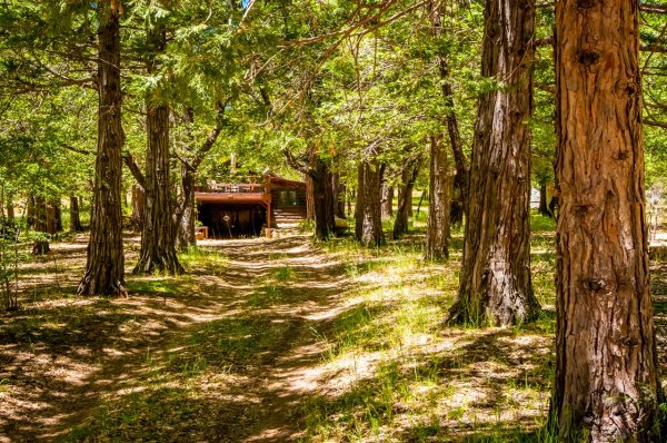 Gorgeous 691 Sq. Ft. Cabin For Sale in Mt. Laguna