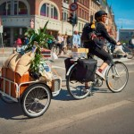 IKEA Offers Low Maintenance, Chain-less Bicycle to USA 007