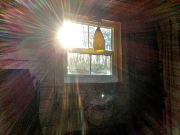 Light Pours into Tiny House