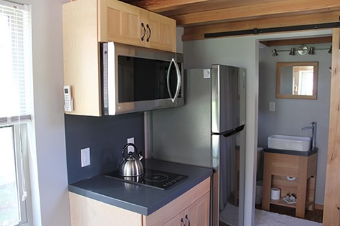 Man Cave Tiny House 003