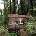 Monte Rio Country Cabin 019