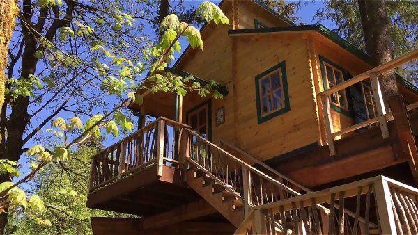 Realwood Tiny Homes Builds an Amazing Treehouse!