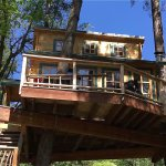 Realwood Tiny Homes Builds an Amazing Treehouse 002