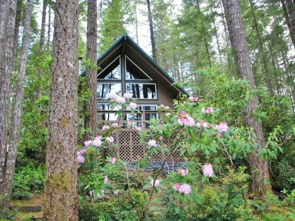 720 sq ft cabin for sale in washington for Tiny house zillow