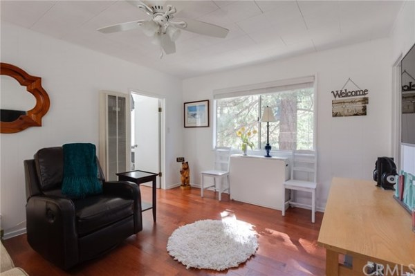 tiny-big-bear-cottage-on-2-acres-for-sale-005