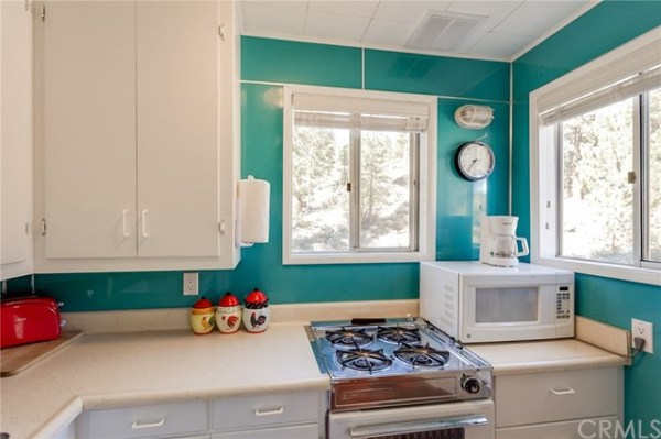 tiny-big-bear-cottage-on-2-acres-for-sale-010