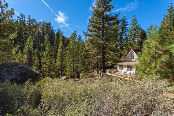 tiny-big-bear-cottage-on-2-acres-for-sale-028
