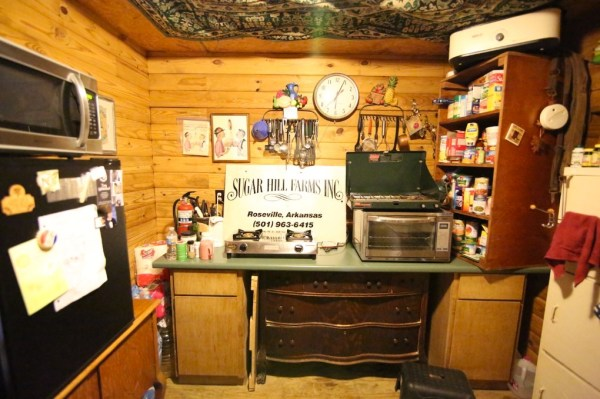 Tiny Cabin on 5 Acres For Sale in the Ozarks 006
