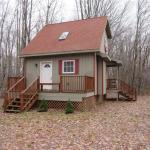 Tiny Cottage on 4 Acres in Albion NY For Sale 001