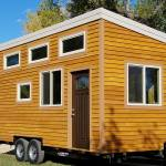 tiny-dreams-on-wheels-shell-for-sale-002