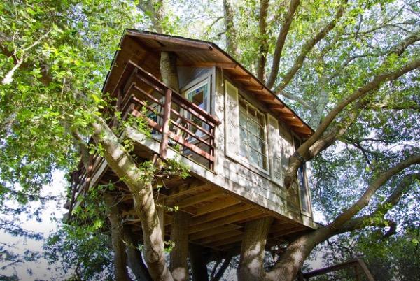 Tiny-Treehouse-Overlooking-San-Francisco-Bay-001