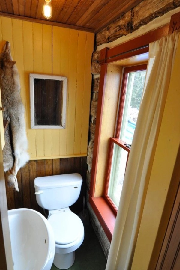 Tiny Trout River Log Cabin 0010