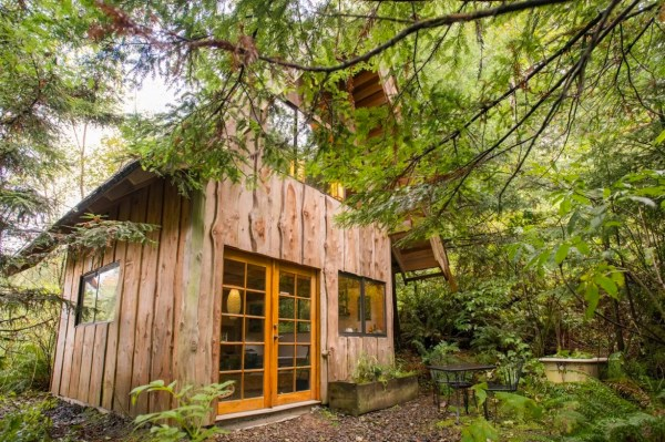 Tiny Zen Cabin in the Forest 001