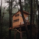 Treehouse For Sale 001