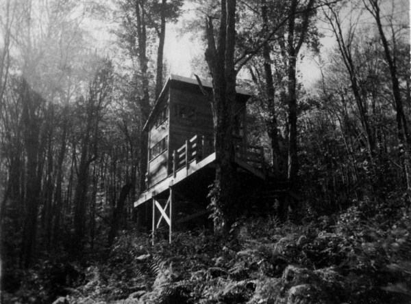 Treehouse For Sale 0012