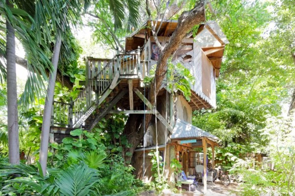 Treehouse Micro Cabin on a Permaculture Farm 001