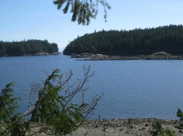 Waters Edge Tiny Cabin 0011