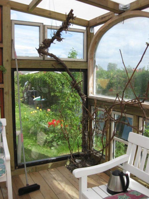 backyard-tiny-hobby-house-made-of-recycled-windows-003