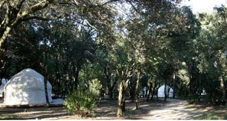 canvas-nomadic-yurts-3