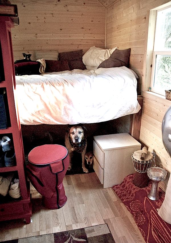 Pets and Dogs and Tiny Houses