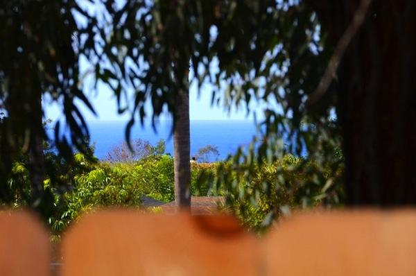 encintas-california-tiny-house-vacation-0013