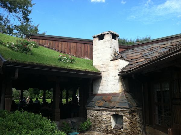 Fireplace and Living Roof at Epcot