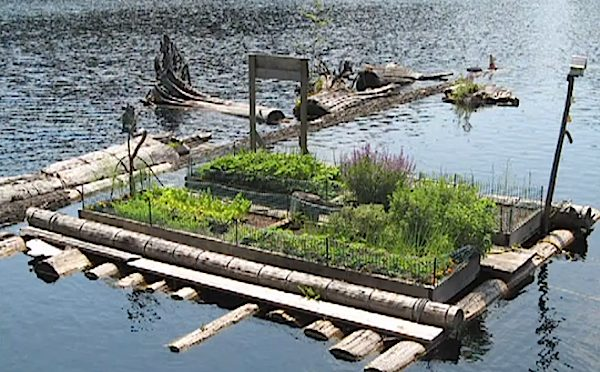 Floating Garden Beds to Grow Vegetables Off-Grid in Floating Home