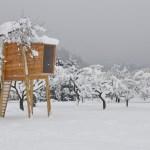 Free Standing Modern Tree House