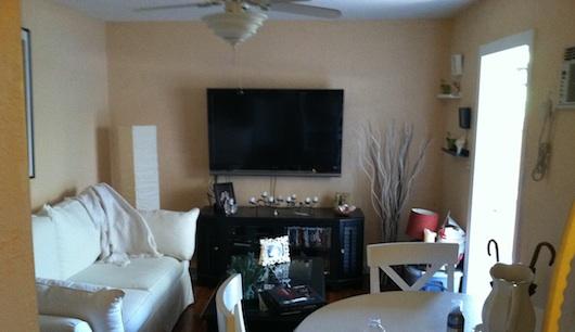 Living Room In Studio Apartment Garage Conversion