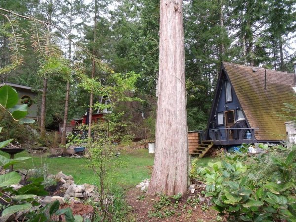 little-a-frame-cabins-on-the-sunshine-coast-00011