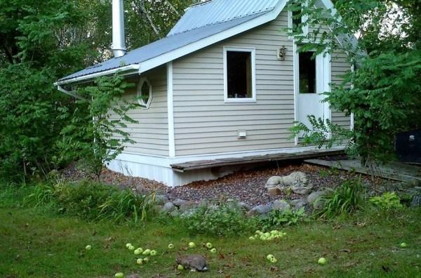 little-cabin-016