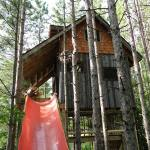 lynn-knowltons-tiny-tree-fort-cabin-003