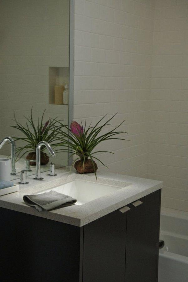 Half Bathroom in Tiny Backyard Modern Studio Cabana