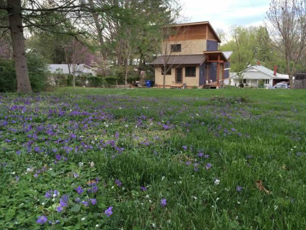 modern-zen-cabin-west-asheville-022