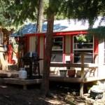 Nanci's Tiny Cabin and Downsizing Story