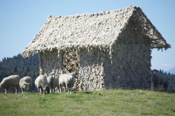 nancymilliken-tika-whare-tiny-house-02