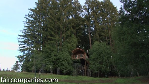 Tiny House Legalized as Observation Tower on Stilts, Creative!