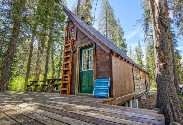riverfront-tiny-cabin-in-the-woods-for-sale-01