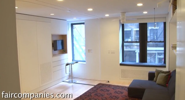 Small NYC Apartment Transforms 420 SF To 1100