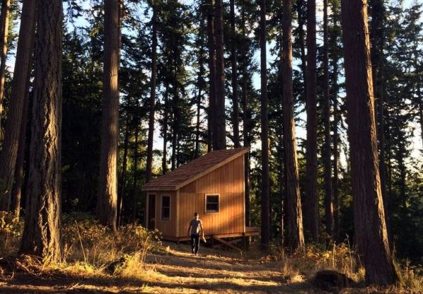tiny-cabin-for-6k-in-6-days-01a
