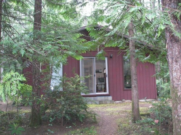 tiny-cabin-for-sale-hoodsport-wa-001