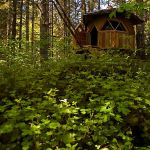 Tiny Dome Home with Roof in Nature