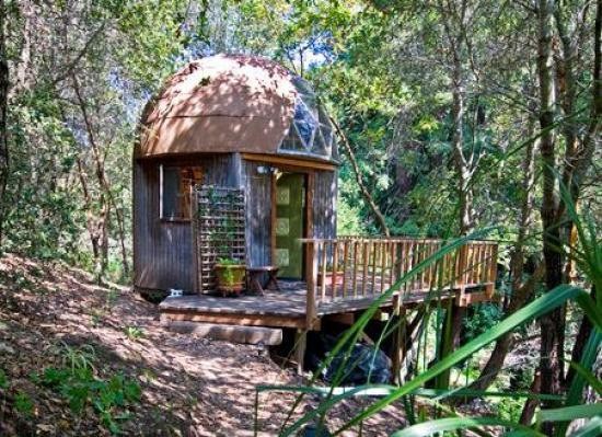 tiny-mushroom-dome-cabin-woods