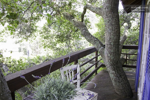 Treehouse Porch