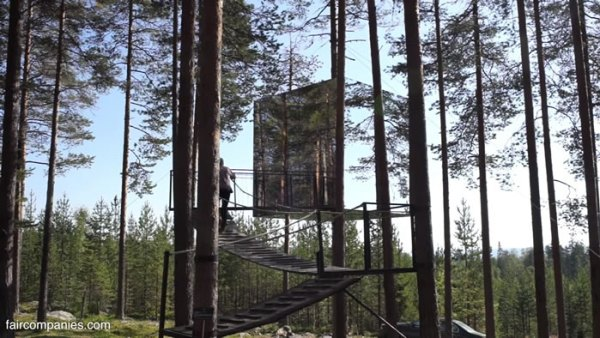 ufo-like-treehouses-in-forest-007