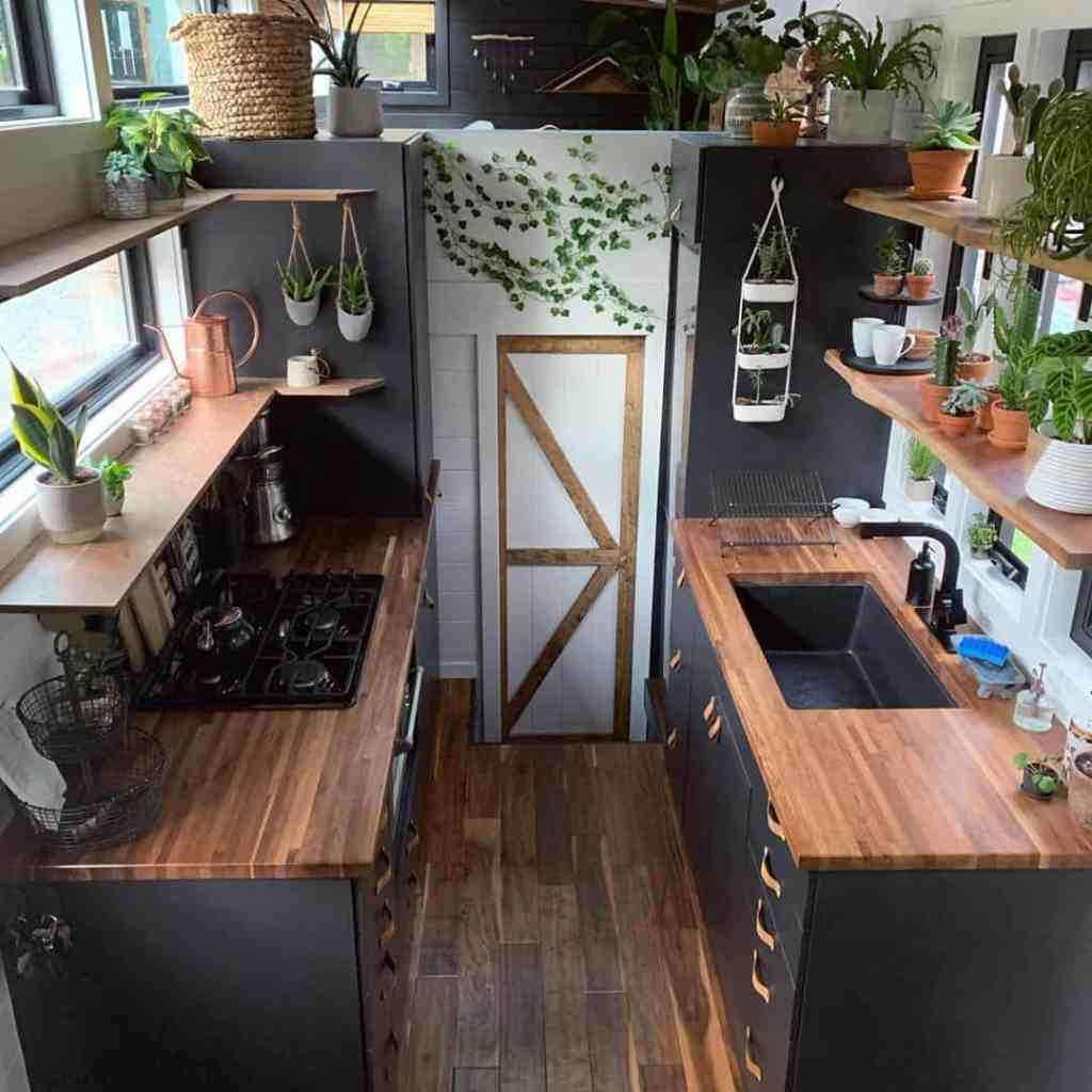 beautiful tiny home kitchen with plants