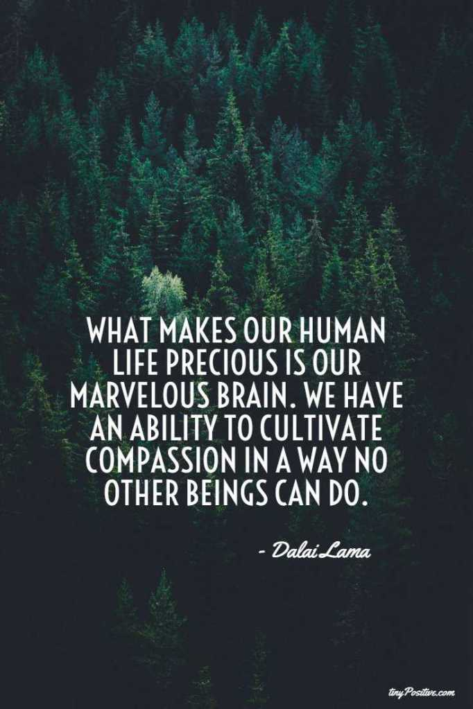 Top 55 Inspirational Quotes on Life From the Dalai Lama 11