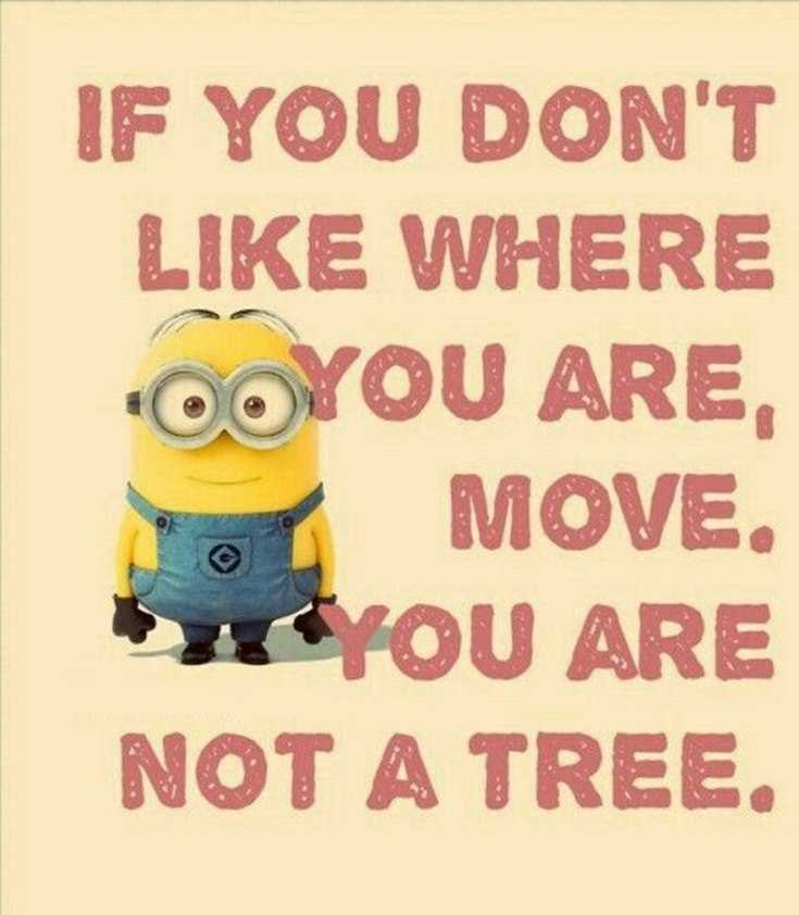 56 Minions Quotes to Reignite Your Love 15