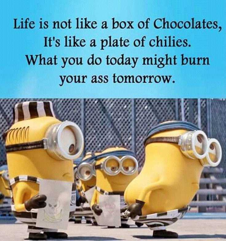56 Minions Quotes to Reignite Your Love 41